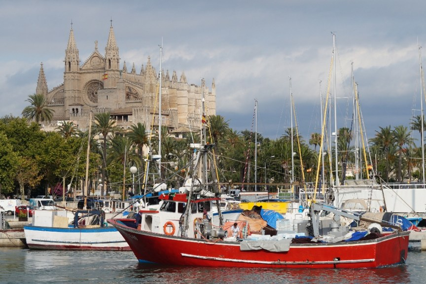 Palma Cathedral by Doug Goodman