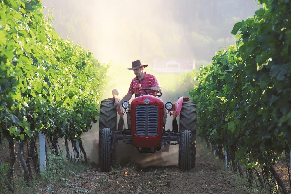 Farm activites