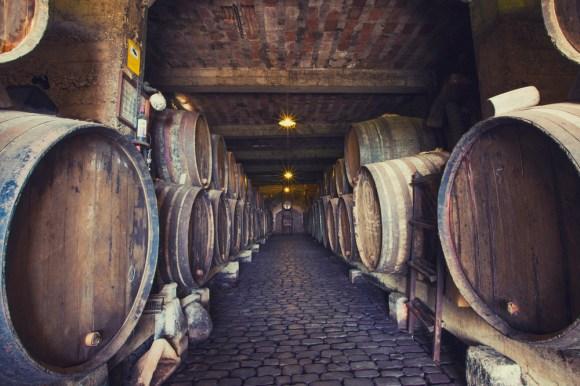 gastronomia vinos bodegas monjes el sauzaLIMG 0473