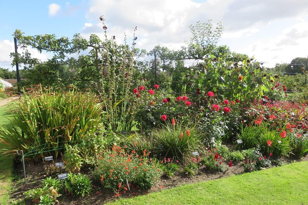 Clumber Park herbacious border