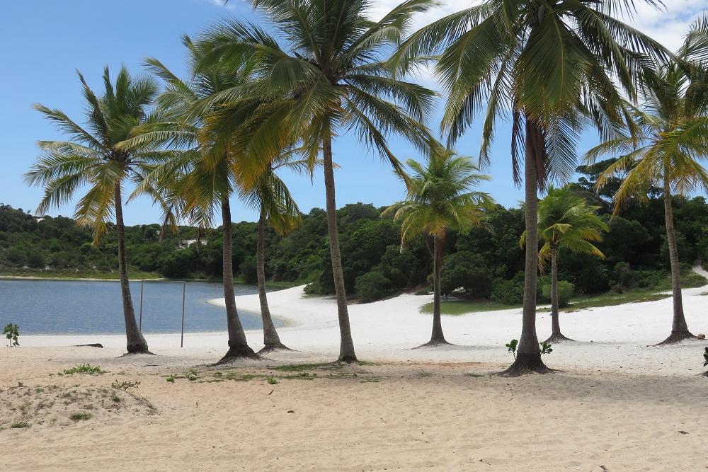Salvador Glorious beaches a