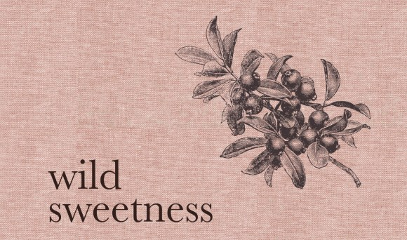 Wild Sweetness – Recipes Inspired by Nature