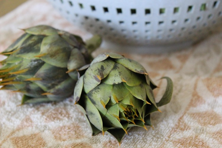 Wild Artichoke Stew Recipe