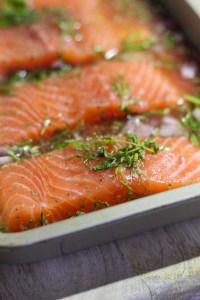 fresh salmon, dill, tarragon