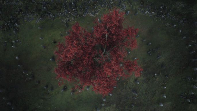children of the forest symbols game of thrones.png
