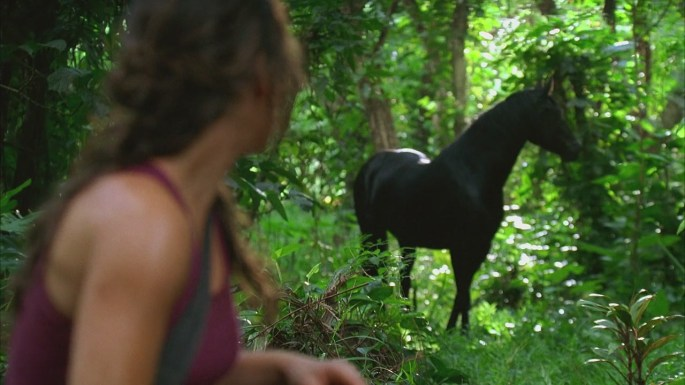 what kate did lost kate horse first