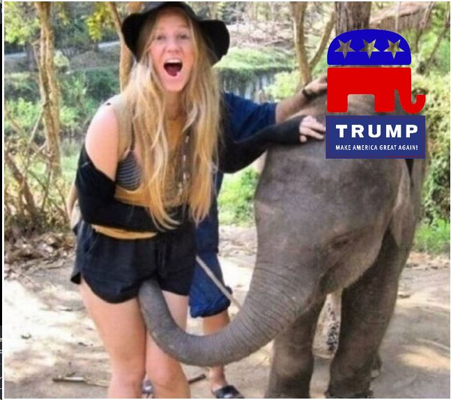 trump-elephant
