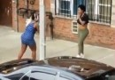 Just Plain Crazy. A Woman Got Totally Naked During A Fight. Contains BriefNudity
