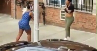 Just Plain Crazy. A Woman Got Totally Naked During A Fight. Contains Brief Nudity