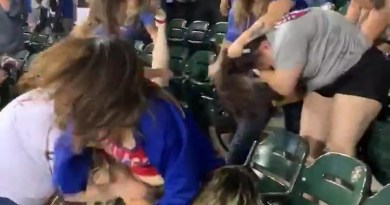 Well Damn! Ladies Start Brawling At A Baseball Game.