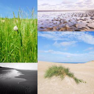 Foto bewerken in een collage