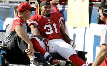 David Johnson Player Profile