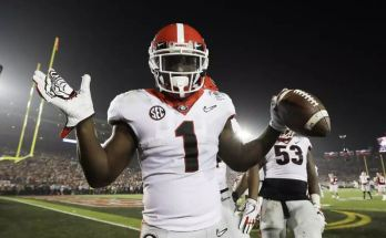Fantasy Football Sony Michel
