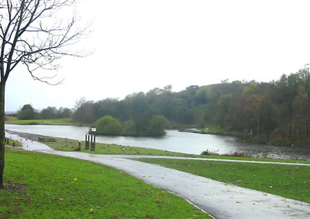 Central Forest Park in Hanley, where several Port Vale players were been caught by a park warden while urinating in the bushes