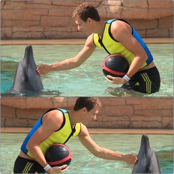 Football players on holiday: Edin Džeko swimming with dolphins in the Maldives