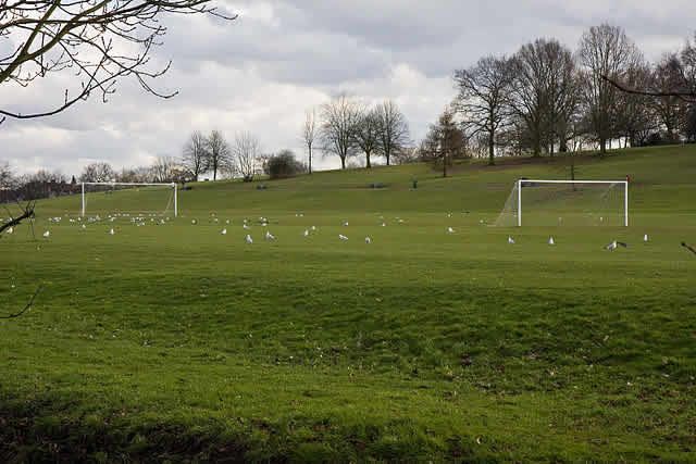 The pitch could look like this, as suggested in many of the Southampton jokes as their summer player exodus continues