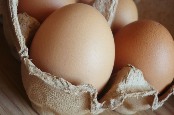 Eggs were used to build the Eggihad