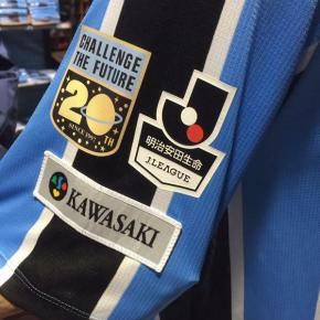 Kawasaki Frontale 2016 (20th Anniversary) PUMA Home Football Kit, Soccer Jersey, Shirt