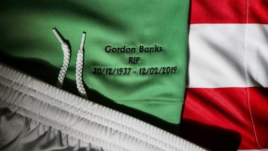 Stoke City 2019 Gordon Banks Macron Tribute Football Kit, Soccer Jersey, Shirt