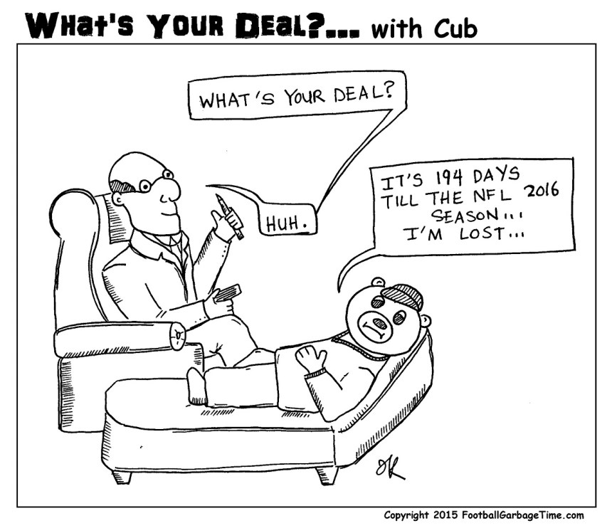 Whats Your Deal - Cub Offseason - Medium