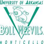 BollWeevils