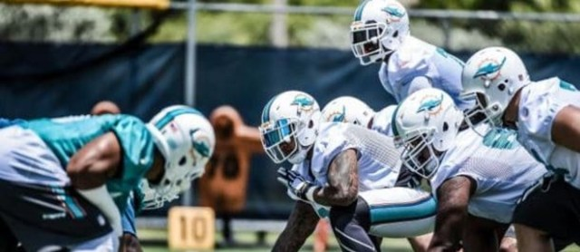 DolphinsMinicampbanner