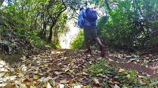 coorg-trekking