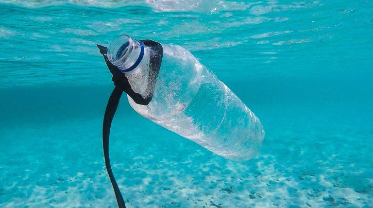 footprint PIP bottle in ocean By Brian Yurasits