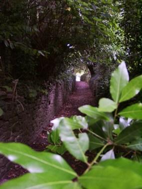 Little path behind Kenton church