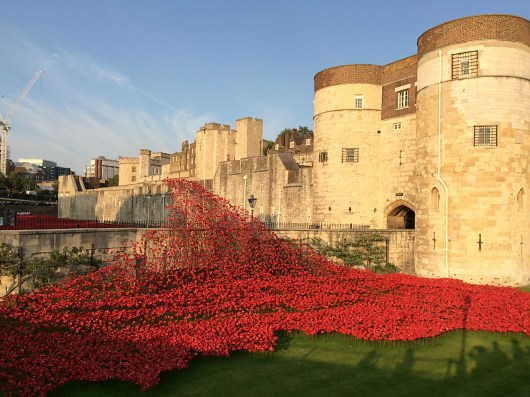The Tower of London & the poppy flower sculpture