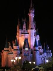 Cinderella Castle ~ Photo taken by T.M. Brown