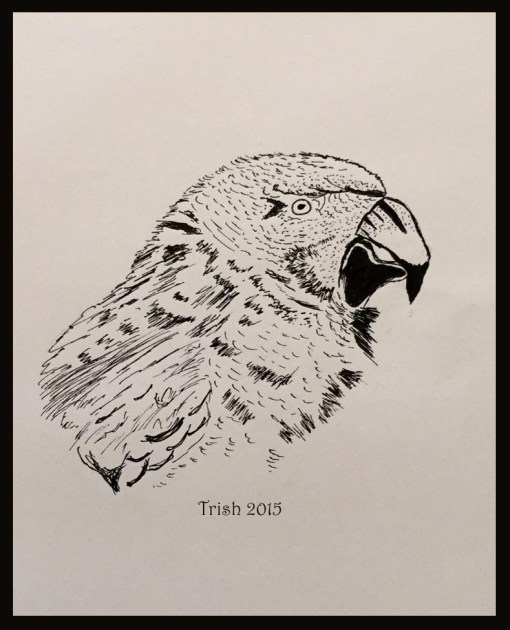 Drawing of a bird done with my foot