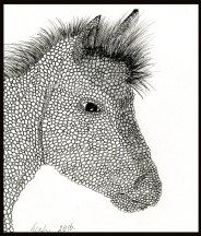 Drawing of a horse done with my foot.