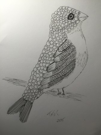 A bird I drew with my foot.