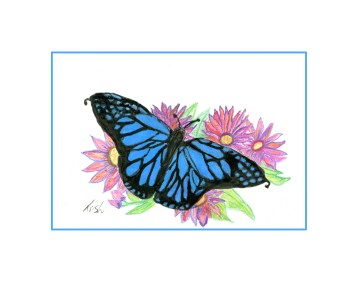 foot drawn butterfly.
