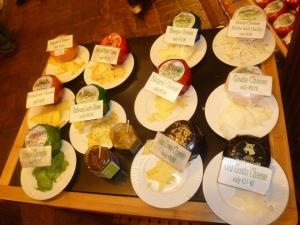 Sooo much cheese to try!!