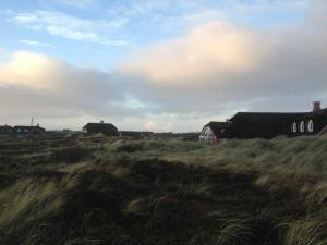 The houses hidden in the sand dunes in Blåvand..
