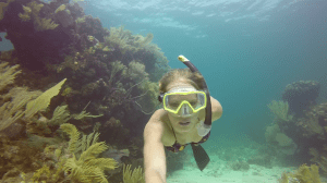 Free Diving amongst the coral..