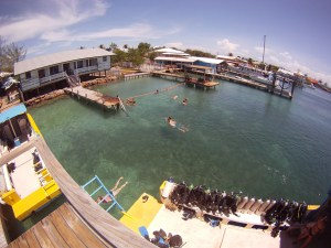 My swimming hole for the five weeks at Utila Dive Center!!