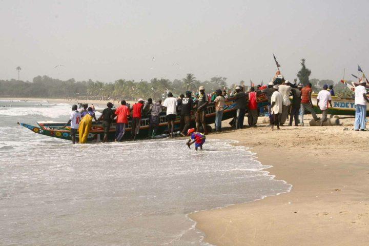 Gambia activities | Fishing village