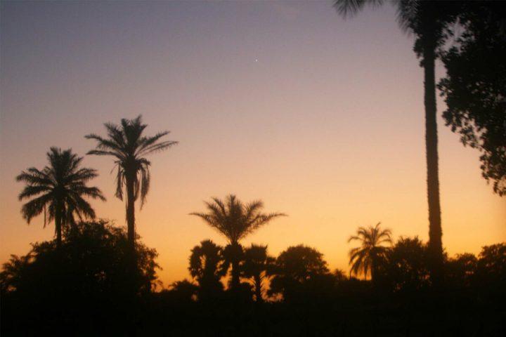 Gambia photography | sunrise wetlands | Gambian sun