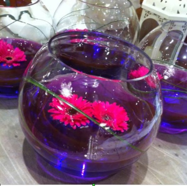 20 Lights And Centerpieces With Fishes Pictures And Ideas On Carver