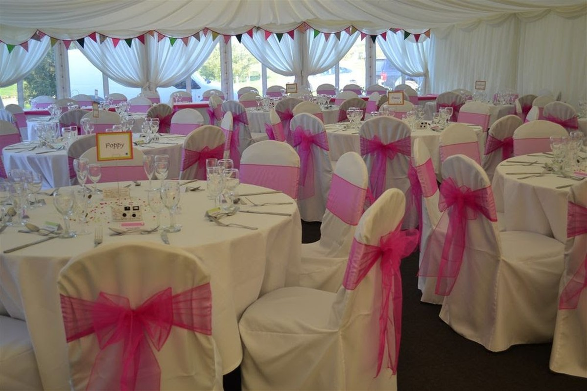 chair covers and sashes for sale ivory leather dining room chairs profitable business cover venue