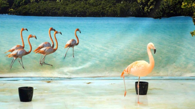Nature: all rights reserved, de Sebas Mulder