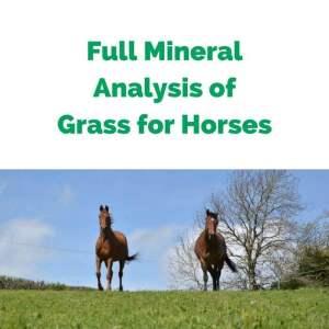 Forageplus-Full-Mineral-Analysis-of-Grass-for-Horses.jpg