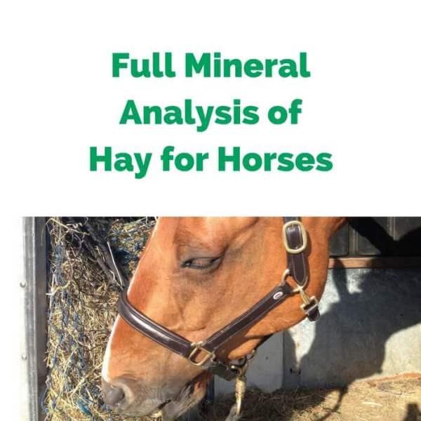 Forageplus-Full-Mineral-Analysis-of-Hay-for-Horses.jpg