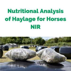 Nutritional-Analysis-of-Haylage-for-Horses-NIR.jpg