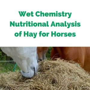 Wet-Chemistry-Nutritional-Analysis-of-Hay-for-Horses.jpg