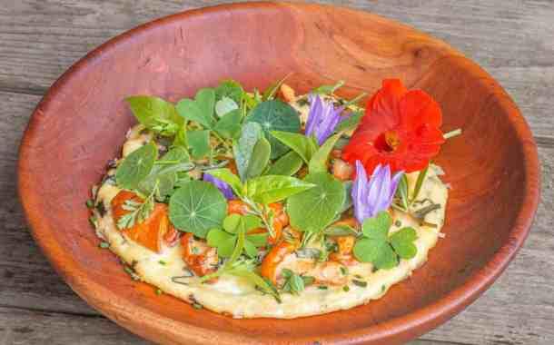 Chanterelle mushroom omelet or omelet aux girolles