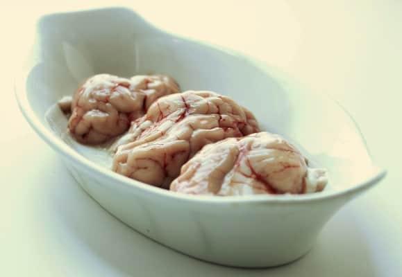 pork brains